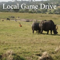 Kragga Kamma Game Park Day Tour